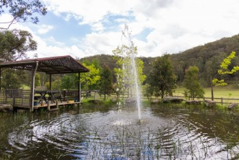 Have a picnic by the pond at Dilly Dally at Wollombi - Wollombi - Hunter Valley